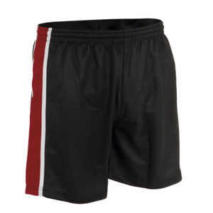 P231 - School Panelled Unisex Sports Shorts - Adult